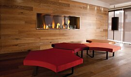 Korn Design Group Linear Fires Fireplace Insert Idea
