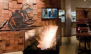 Hippo Creek African Grill - Hospitality Fireplaces