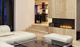 Living Area Fireplace Inserts Flex Fireplace Idea