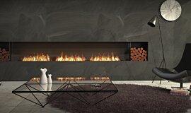Living Room Flex Fireplaces Flex Fireplace Idea